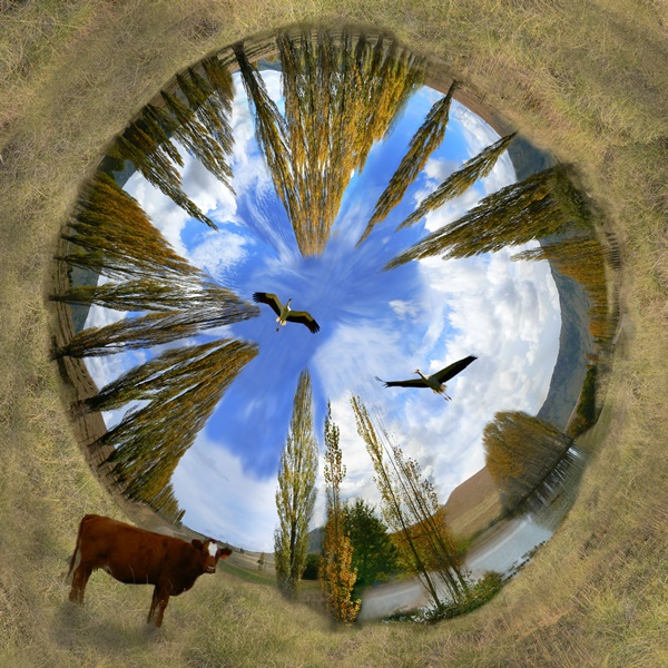Eastern Cape Tiny Planet