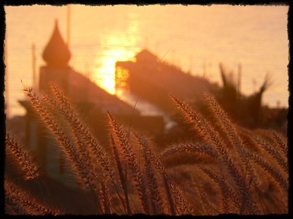 Sunrise over Port Elizabeth Harbour