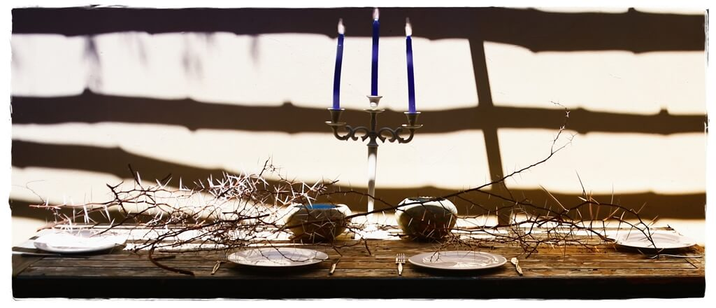 table set for meal, thorns moody shadows