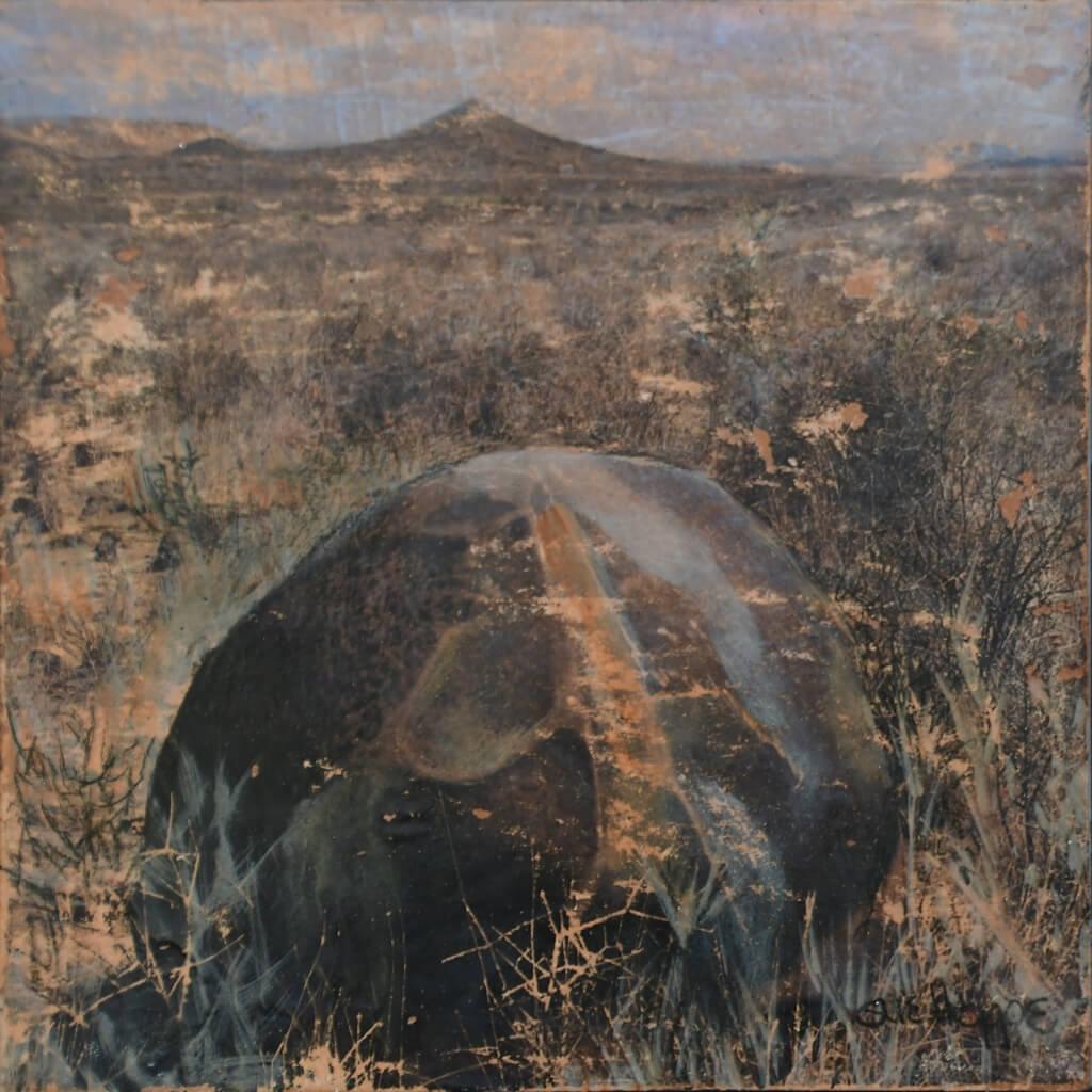Karoo Rock